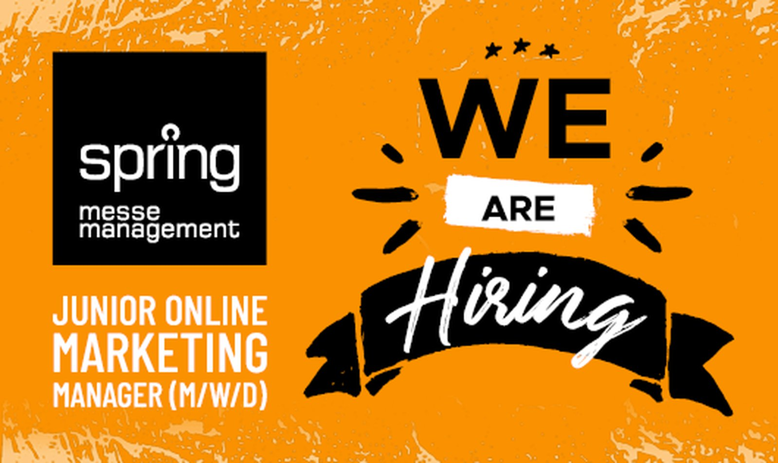 spring we are hiring Online Marketing Manager