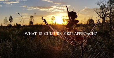 Culture first approach